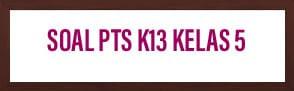 Soal PTS Kelas 5 Tema 2 Udara Bersih Bagi Kesehatan beserta dengan kuncinya