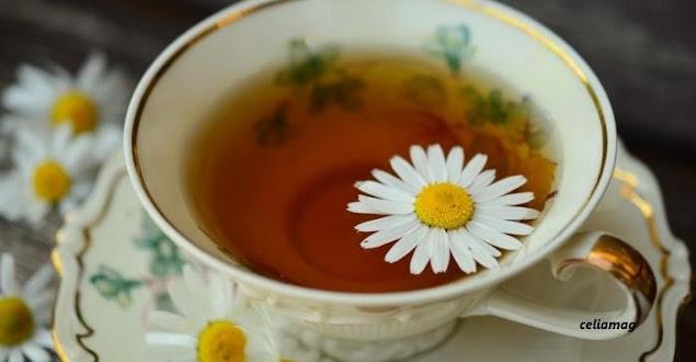 7 فوائد في فنجان الكاموميل.. أبسطها محاربة البرد والأنفلونزا