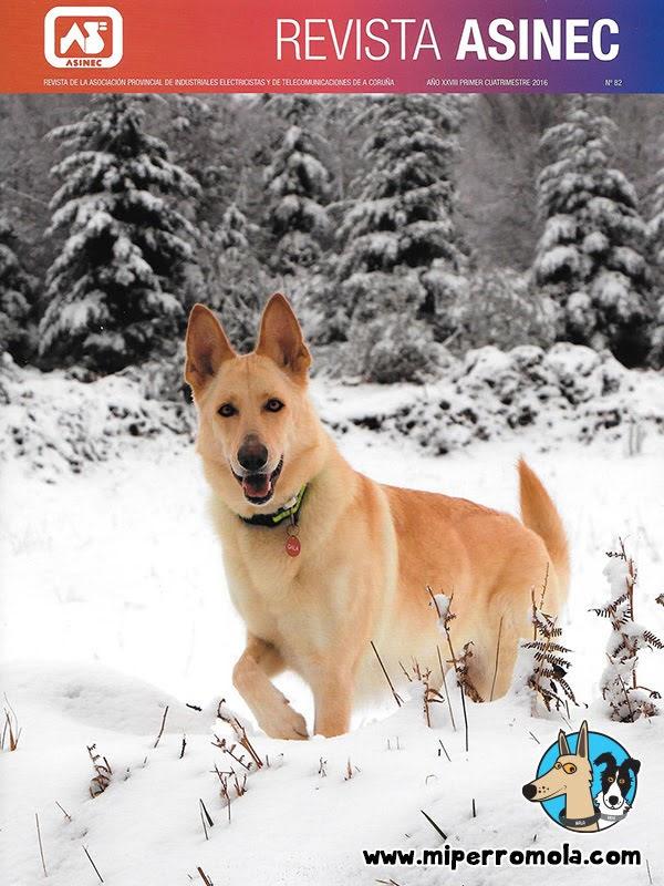 Can de Palleiro en la portada de la revista ASINEC