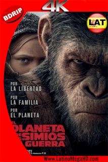El Planeta De Los Simios: La Guerra (2017) Latino Ultra HD BDRip 4K 2160p - 2017