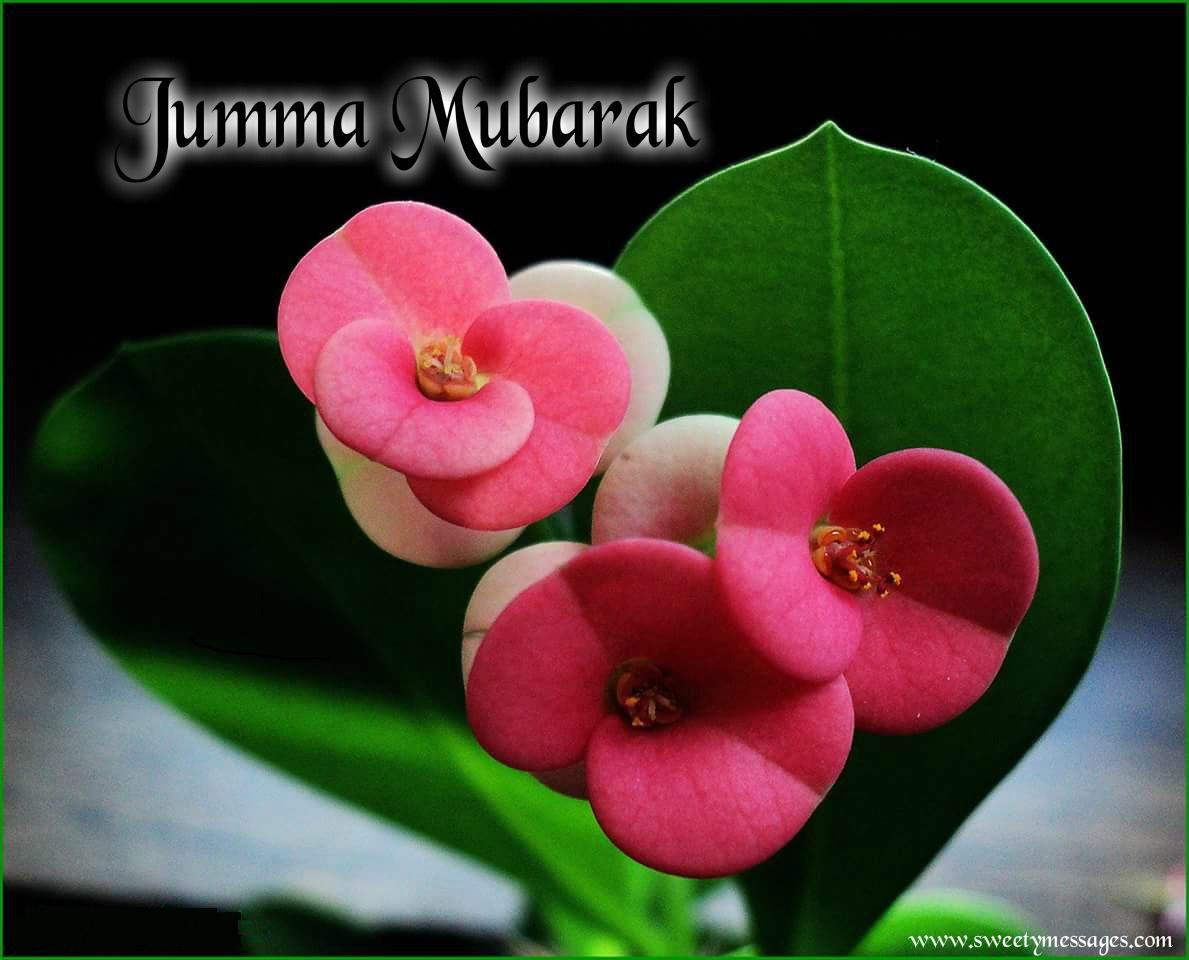 Jumma Mubarak Images Beautiful Messages