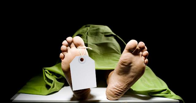 اقتراح في الحكومة الهولندية بتحليل الجسد بعد الموت بدلاً من الحرق والدفن