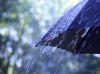 (ФОТО)На юге Свердловской области ожидаются сильные дожди.