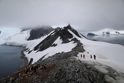 В Антарктиде рекордно потеплело