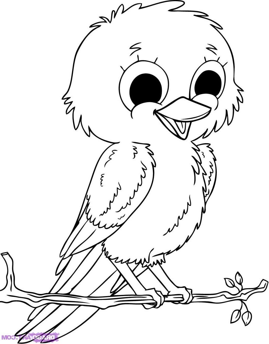baby birds in a nest coloring pages - photo #21