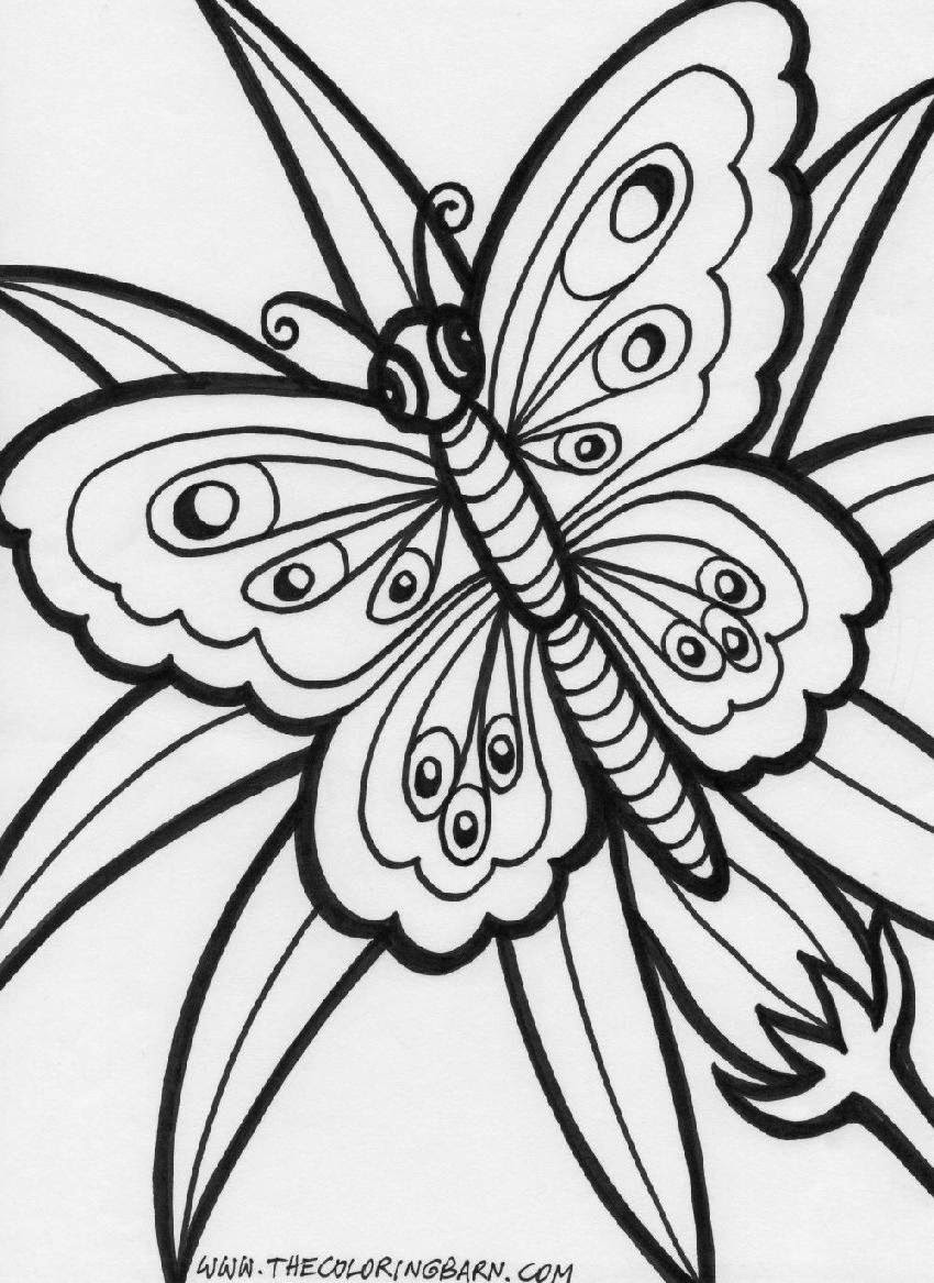Coloring Pages Printable Peacocks Stress Relief Coloring Pages