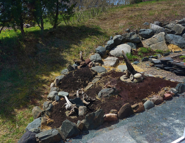 Building stage 2 for the rock garden fill with straw-bale & dirt.