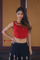 Telugu Actress Nishi Ganda Stills in Red Blouse and Black Skirt at Tik Tak Telugu Movie Audio Launch .COM 0288.JPG