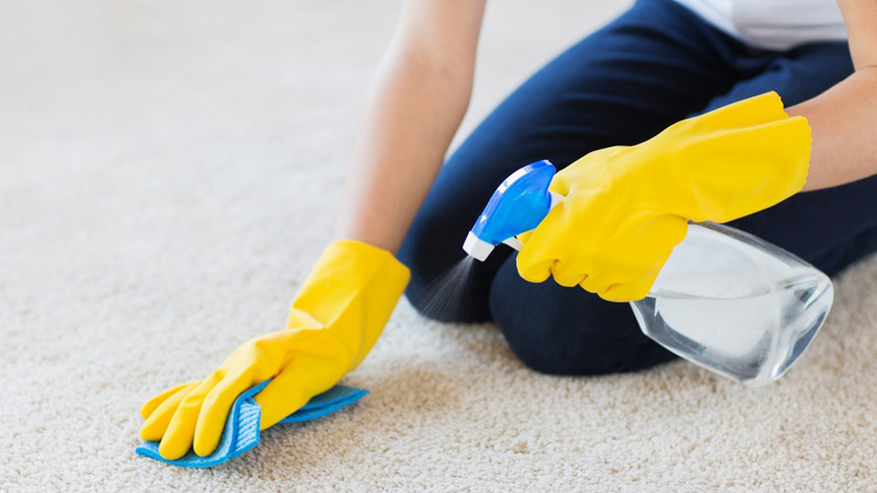 9 DIY Solutions for Carpet Stains