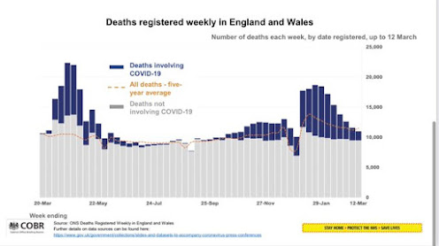230321 Deaths by date in the UK bar chart little colour, graph shows huge rise and fall.