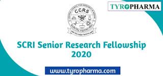 SCRI Senior Research Fellowship 2020