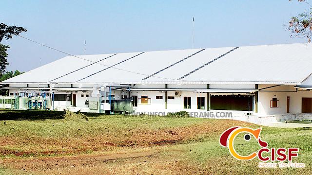 Lowongan Kerja PT. Cibadak Indah Sari Farm (CISF) Penempatan Serang