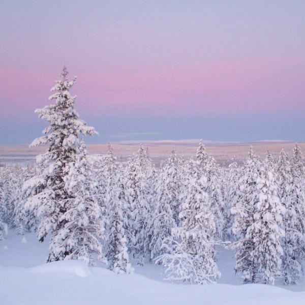 Näkymä hiihtoretkeltä Muoniovaarasta Ounastunturille päin