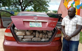 Dismissed NDLEA official arrested with 254kg of weed in Niger State