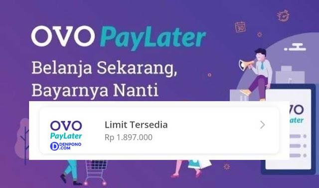 Berbagi Pengalaman Memakai OVO PayLater Tokopedia