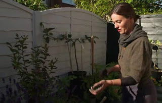 Frances plants a mixture of fruit, herbs and flowers