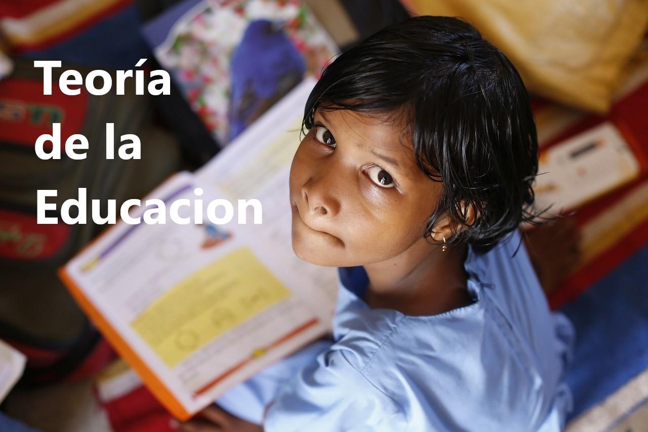 Teoría de la Educación de Paciano Fermoso. PDF gratis.