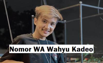 Nomor Whatsapp Wahyu Kadeo