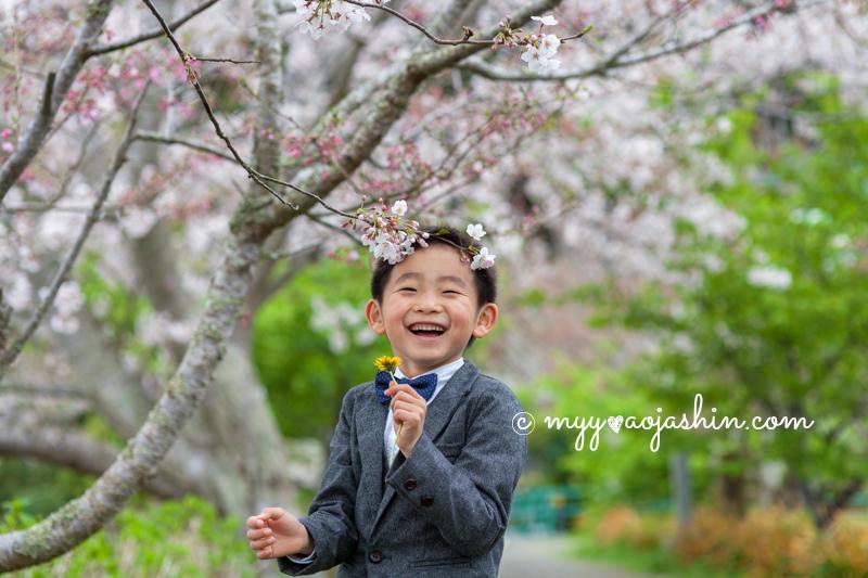 入園 記念写真 千葉 フォトスタジオ ロケーション 桜