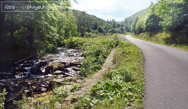 śląsk beskidy rowerem z dziećmi, dolina trasa asfaltowa śląsk