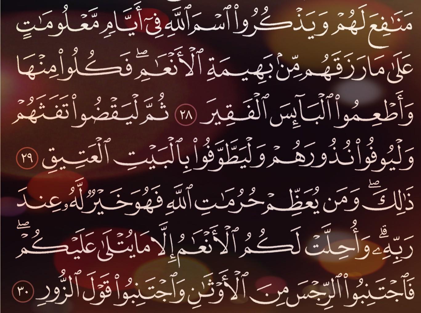 شرح وتفسير سورة الحج Surah Al Hajj ( من الآية 24 إلى الاية 34 )