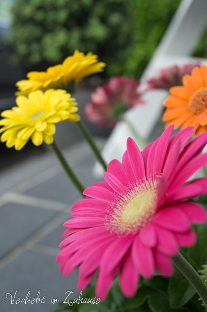 #Haustürdeko: Dekorieren in bunt und Farbe