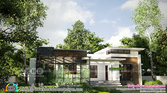 Beautiful flat roof contemporary style house