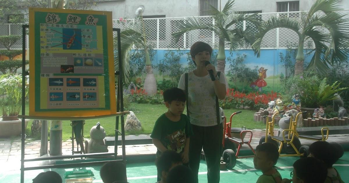 和平幼兒園部落格: 生態教學-錦鯉魚