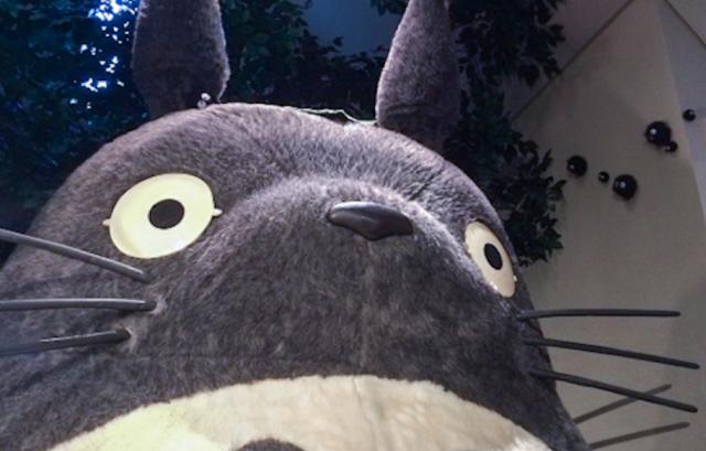 Seorang Pria Kaget saat Menemukan Kerangka Manusia di 'Hutan Totoro'