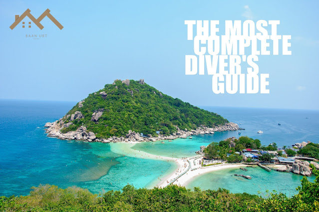 Koh Tao: the most complete diver's guide to the island.