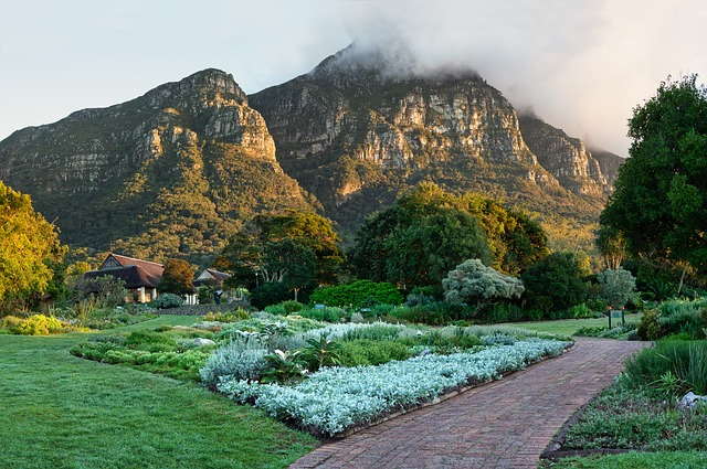 Kirstenbosch National Botanical Gardens, Travel Attraction, Tourist attraction, Best Places to see, Best Places to visit, Travel,