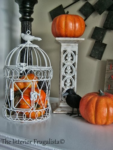Bird Cage, mini pumpkins and a black bird.