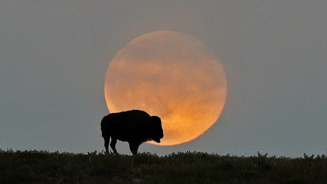 blood moon meaning in native american - photo #6