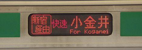 新宿経由 快速 小金井 E231系