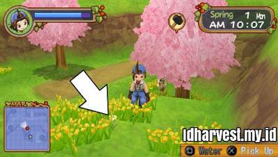 Cara Mendapatkan Bunga di Harvest Moon: Hero of Leaf Valley