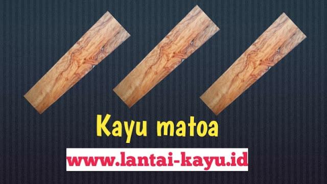 karakteristik kayu matoa