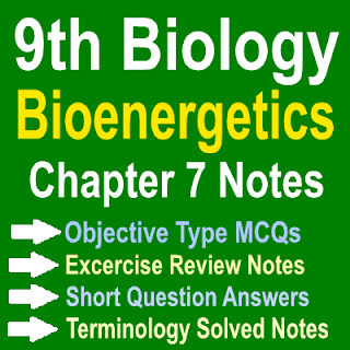 Punjab Board Biology Notes Chapter Seven Bioenergetics Solved MCQs Short Question Answers