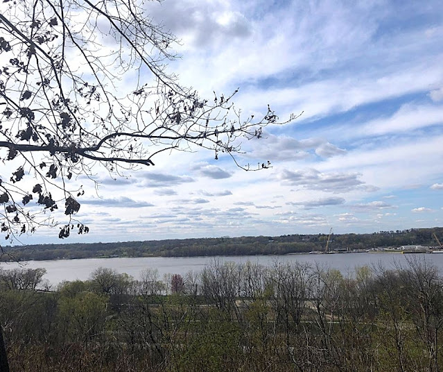 We took a pause after hiking up the bluffs of Illiniwek Forest Preserve to admire the spectacular view of the Mississippi River.