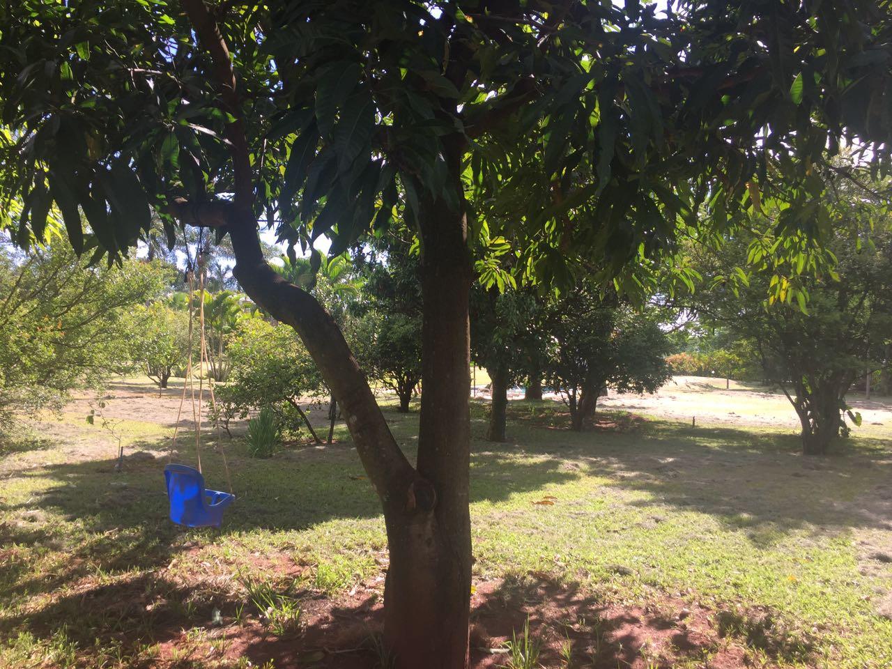 foto condomínio morada do sol uberlandia-visao do pomar outra tomada 2