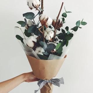 Cotton-Flower-lamongan