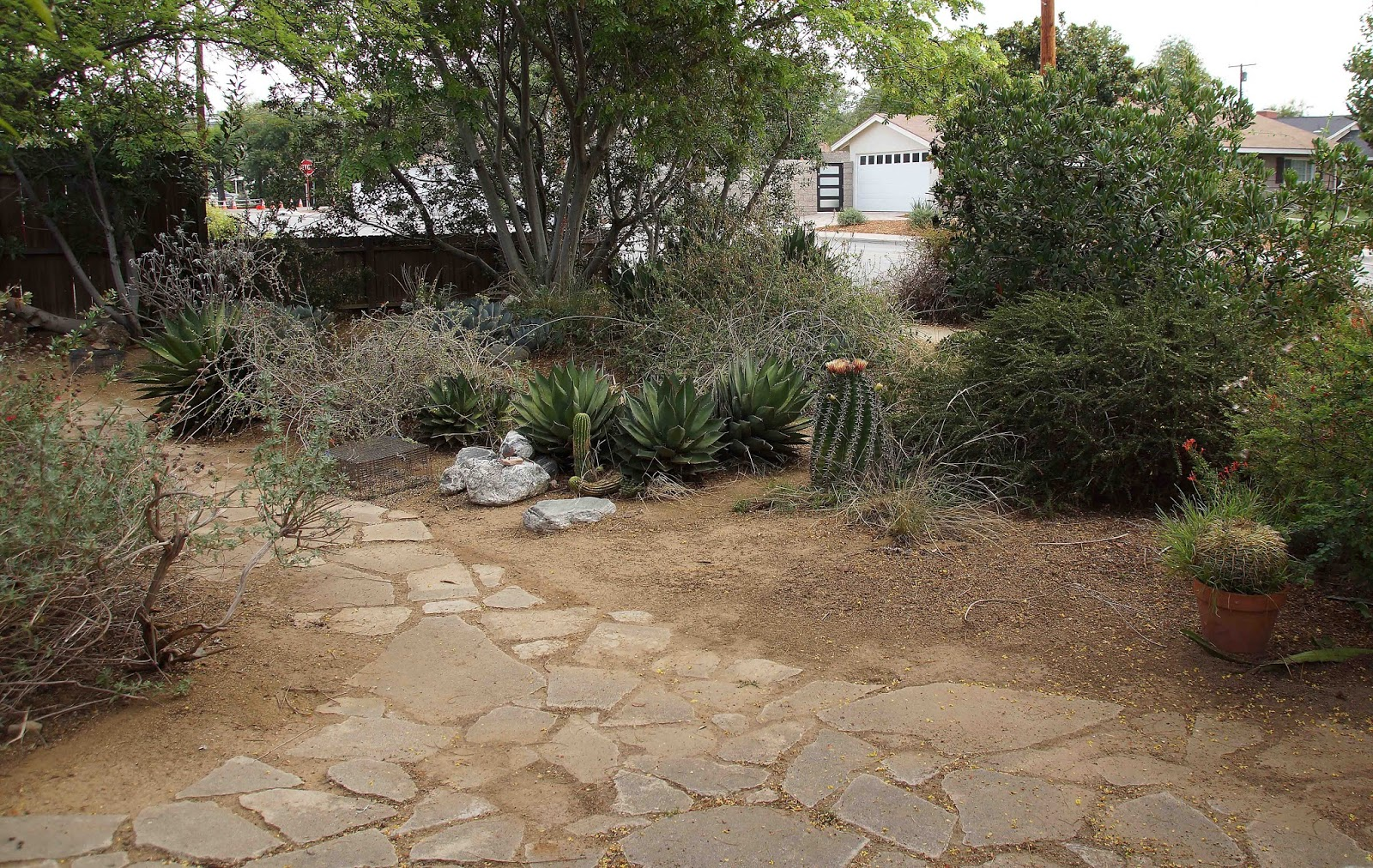 Three Lawnless Gardens: Time, Patience, Style