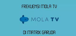 Perbandingan Menonton Streaming di Mola TV dan Situs Ilegal
