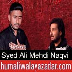 https://www.humaliwalyazadar.com/2018/09/syed-ali-mehdi-naqvi-noha-2019.html