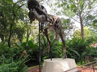 T Rex Fossil Dinoland USA Disney's Animal Kingdom