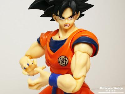 S.H.Figuarts Son Goku - A Saiyan Raised on Earth - de Dragon Ball Z - Tamashii Nations