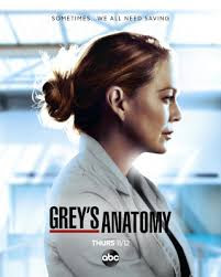 Anatomia de Grey Temporada 17 audio Español