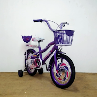 16 erminio 2402 ctb kids bike