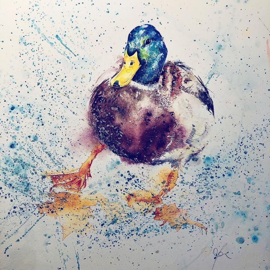 02-Mallard-Duck-Sue-Ayres-www-designstack-co