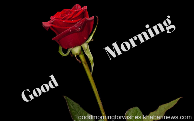 good morning messages for love