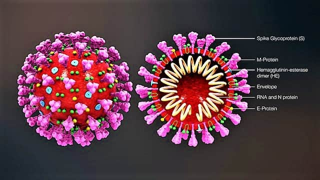 What is coronavirus with there symptoms